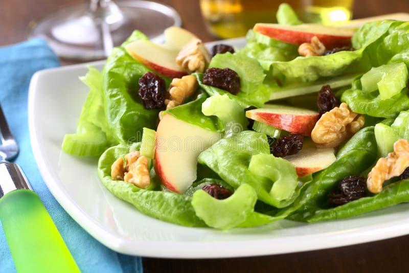 Salada de Waldorf fotos de stock