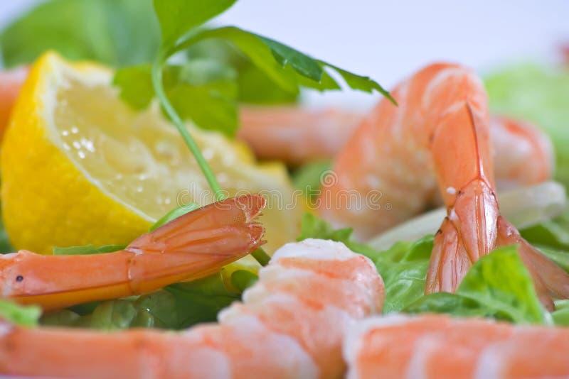Salada deliciosa de camarões frescos imagem de stock