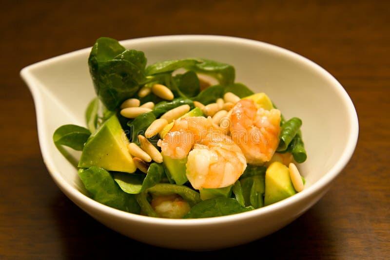 Salada do abacate do camarão foto de stock