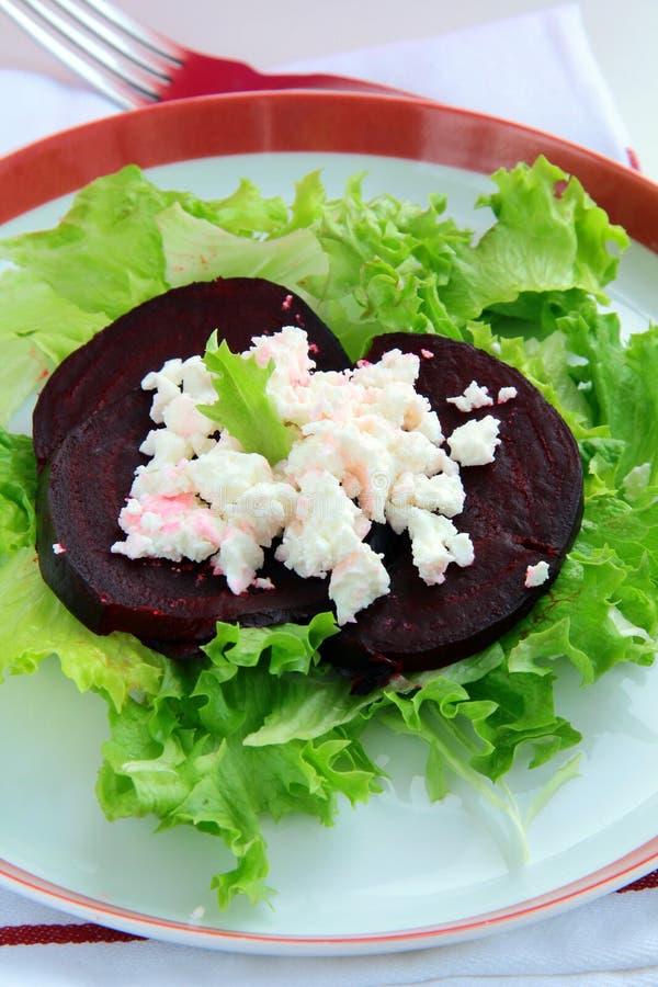 Salada do aperitivo das beterrabas e do queijo de cabra imagens de stock