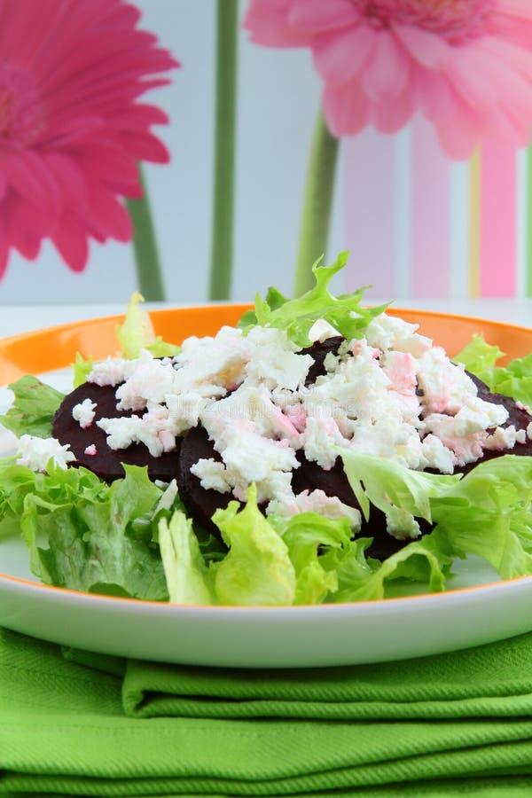 Salada do aperitivo das beterrabas e do queijo de cabra imagem de stock royalty free