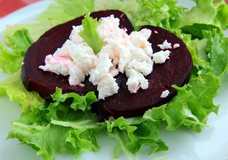 Salada do aperitivo das beterrabas e do queijo de cabra fotografia de stock