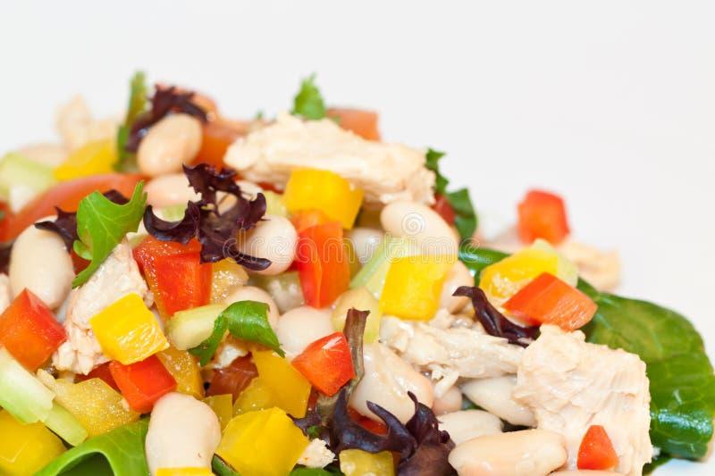 Salada do atum e do feijão fotografia de stock royalty free