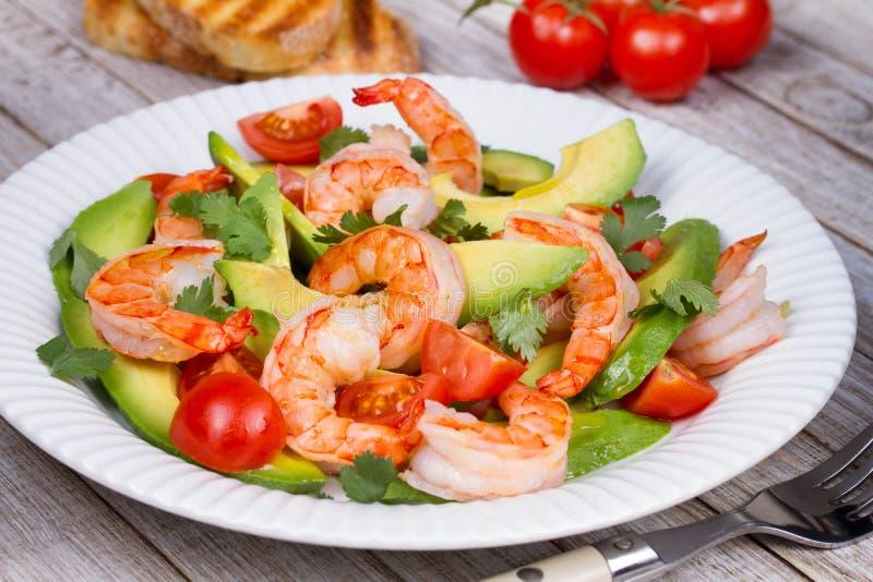 Salada do camarão e do abacate imagem de stock
