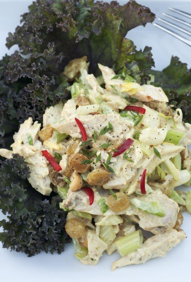 Salada do caril da galinha imagem de stock