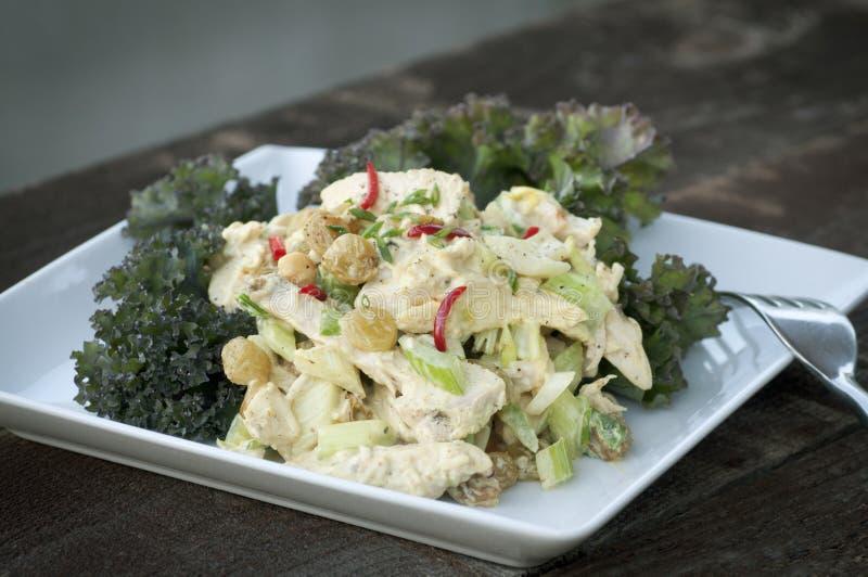 Salada do caril da galinha fotos de stock royalty free