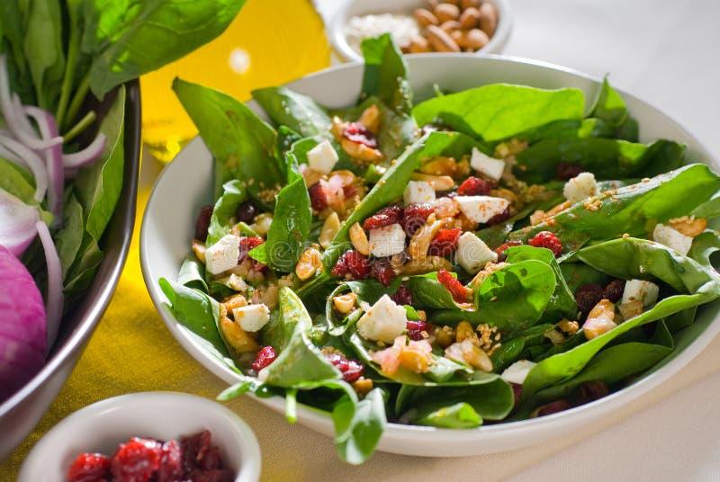 Download Salada do espinafre imagem de stock. Imagem de folhas - 12804997