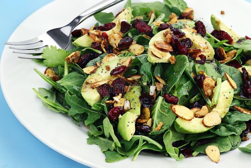 Salada do espinafre e do abacate fotos de stock