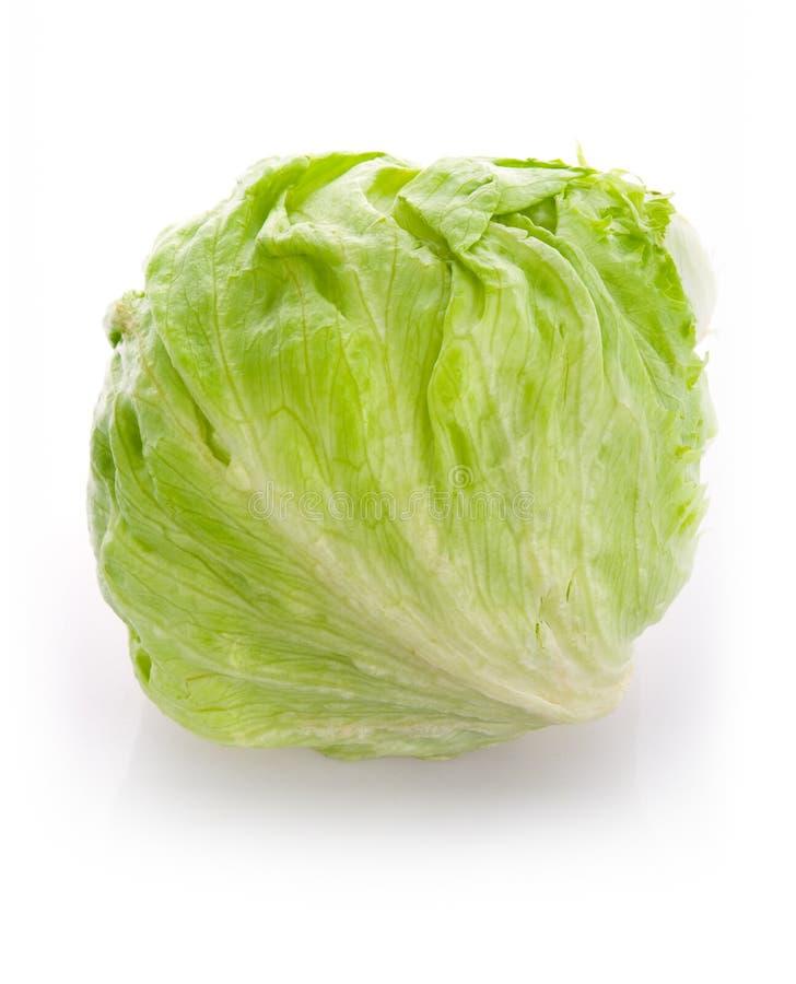 Salada do gelo fotos de stock
