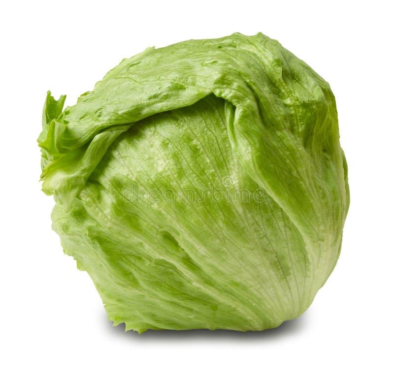 Salada do iceberg - cabeça de alface foto de stock royalty free