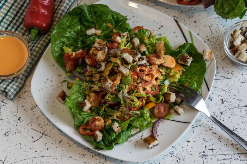 Salada do legume fresco com pão torrado crocante e vinagreta foto de stock