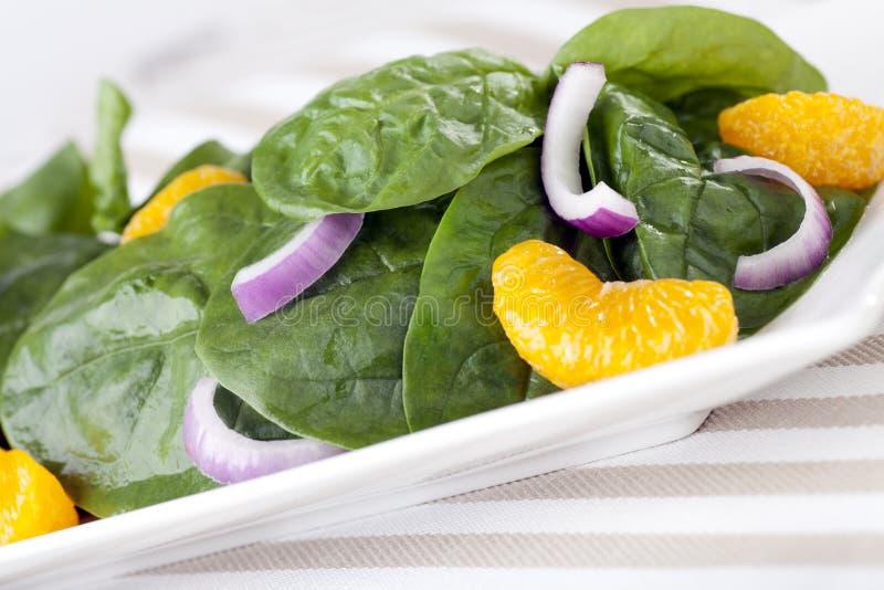Salada do mandarino do espinafre imagem de stock