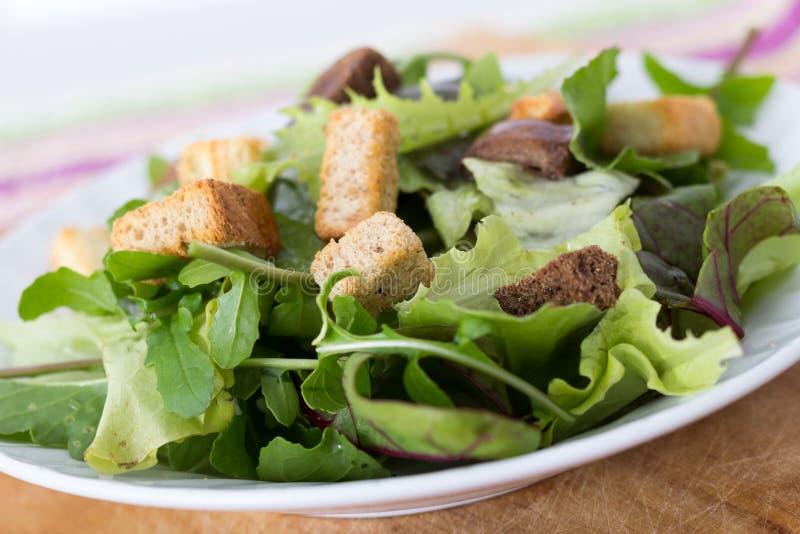salada do mesclun fotos de stock royalty free