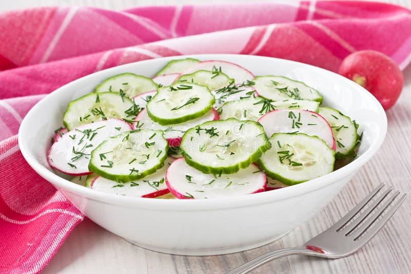 Salada do pepino do rabanete imagens de stock