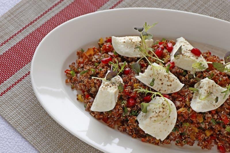 Salada do Quinoa com mozzarella do búfalo foto de stock