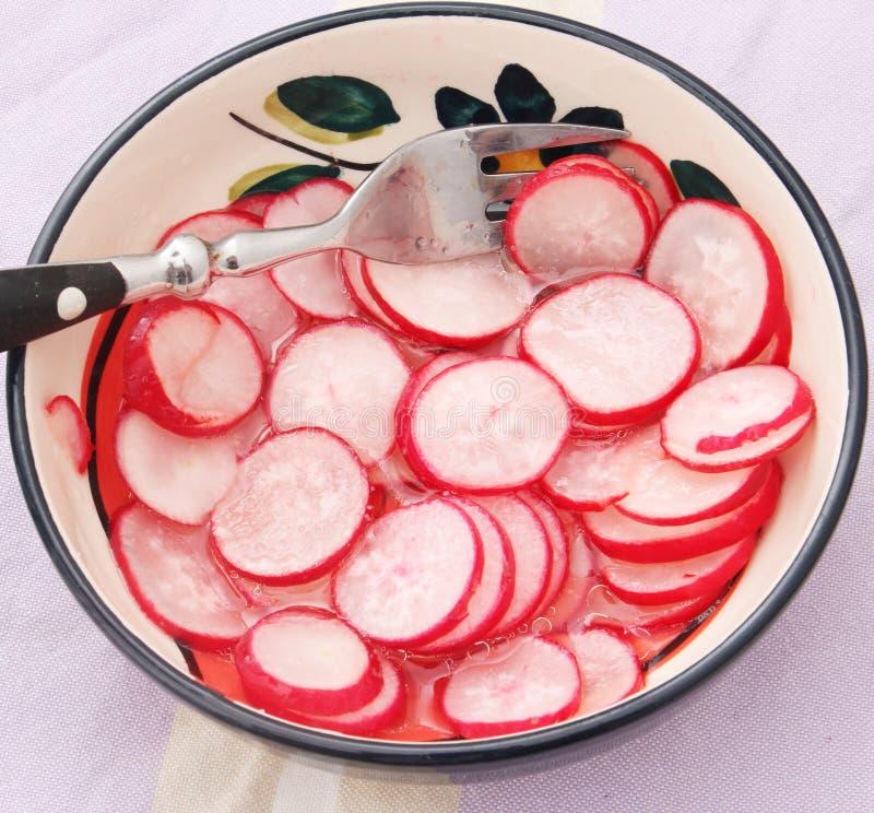 Salada do rabanete foto de stock royalty free