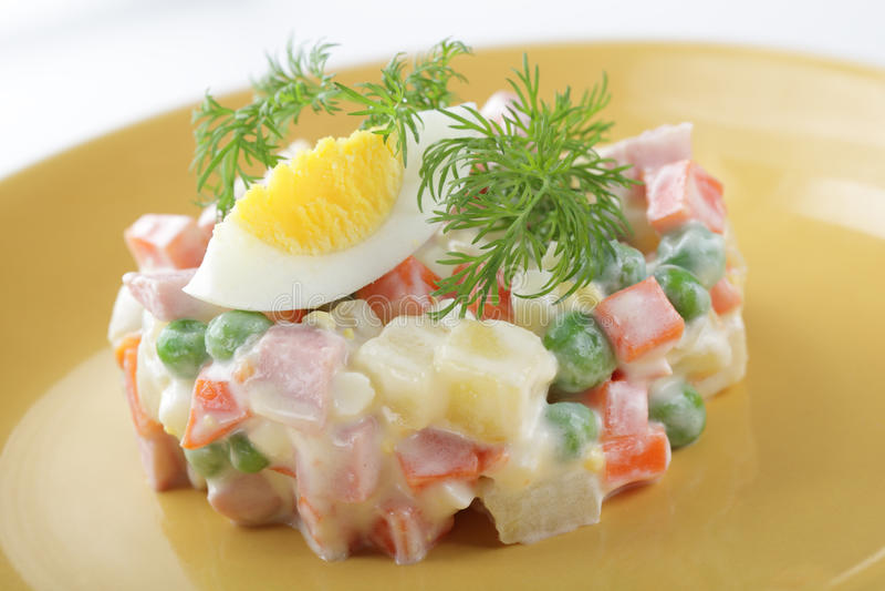 Salada do russo imagem de stock royalty free