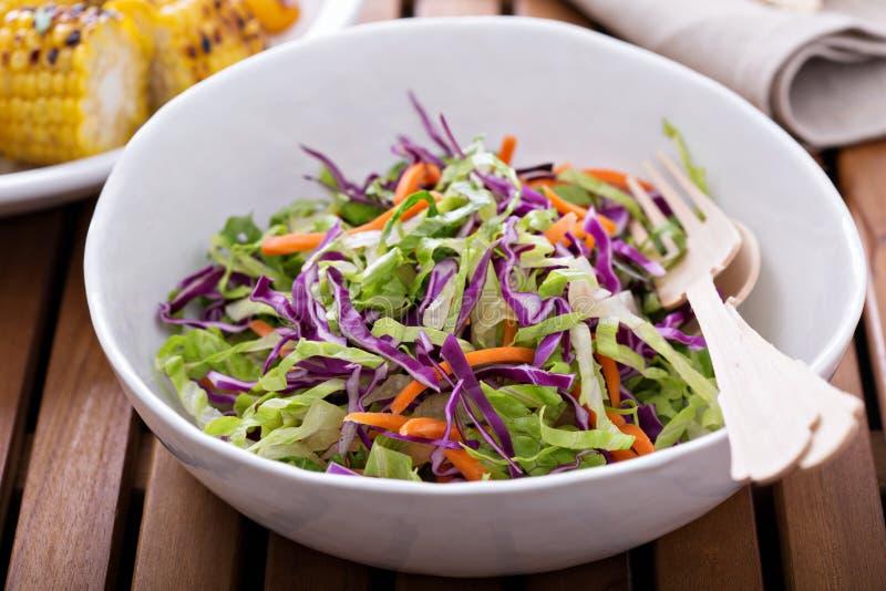 Salada do slaw do Cole para um piquenique exterior fotografia de stock royalty free