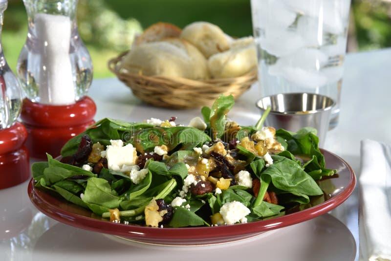 Salada dos espinafres imagens de stock royalty free