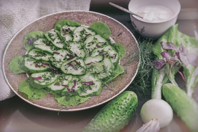 Salada dos pepinos frescos e dos verdes foto de stock