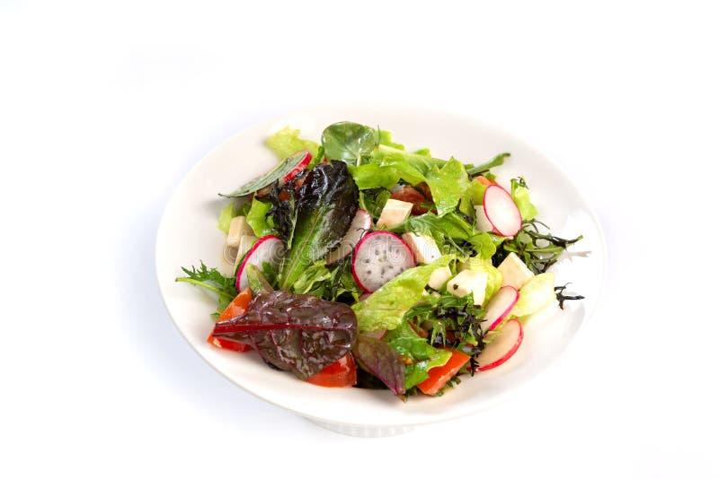 Salada dos verdes, do queijo e do rabanete em um fundo branco isolado imagens de stock royalty free