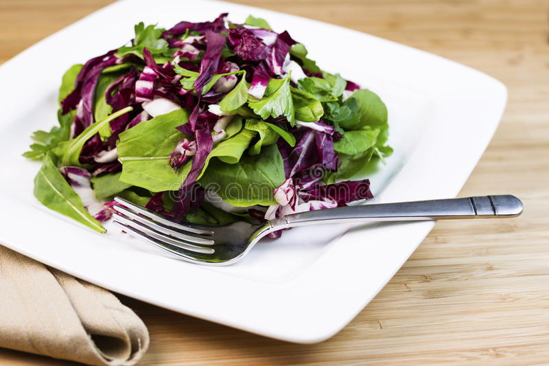 Salada e ervas frescas na placa com forquilha e guardanapo fotografia de stock