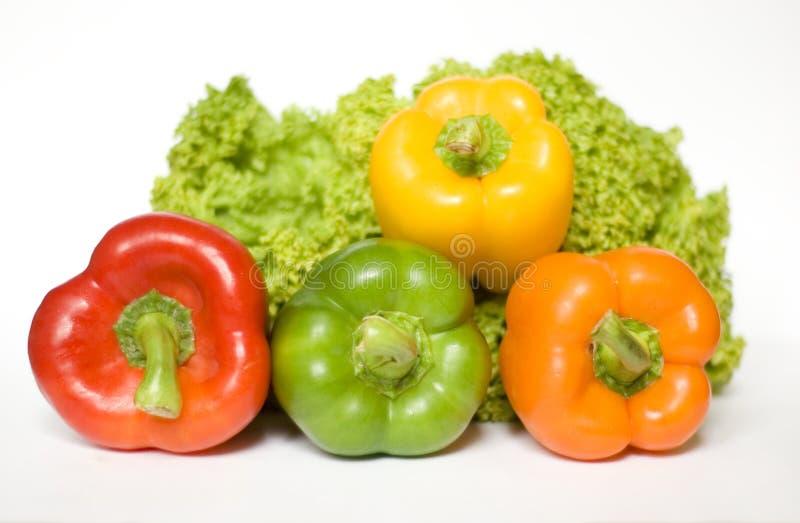 Salada e pimentas coloridas imagem de stock