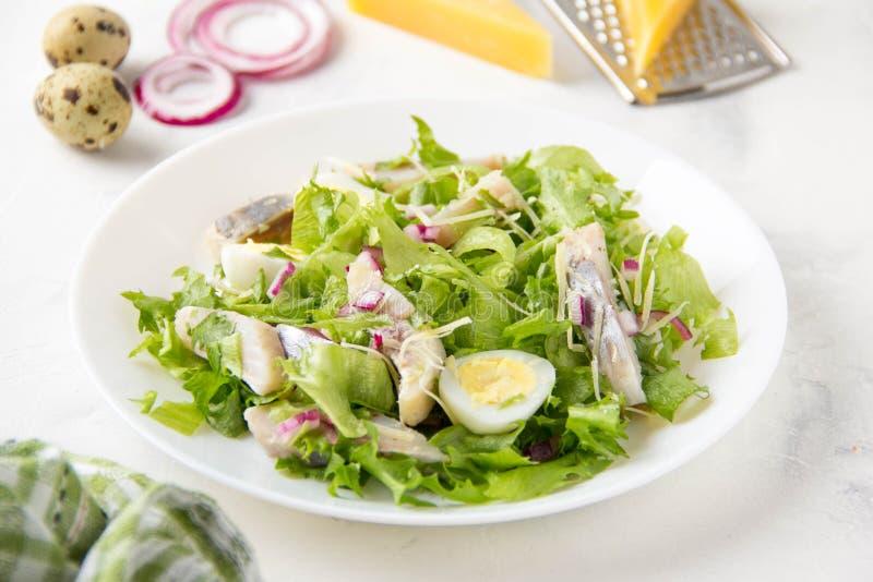 Salada fresca com arenques salgados, peixes, alface, os ovos de codorniz fervidos, as cebolas vermelhas e queijo parmesão duro Al fotografia de stock royalty free