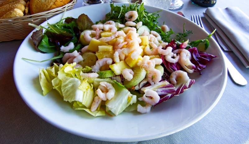 Salada fresca com camarões, chicória e pepinos foto de stock