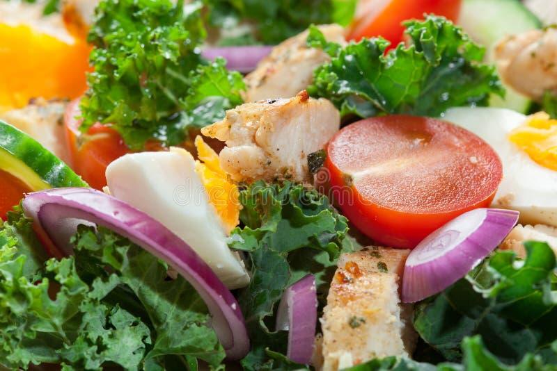 Download Salada Fresca Com Galinha, Tomates, Ovos E Alface Na Placa Imagem de Stock - Imagem de jantar, fresco: 65575601