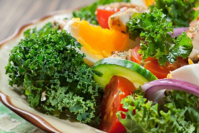 Download Salada Fresca Com Galinha, Tomates, Ovos E Alface Na Placa Foto de Stock - Imagem de roasted, mola: 65575604