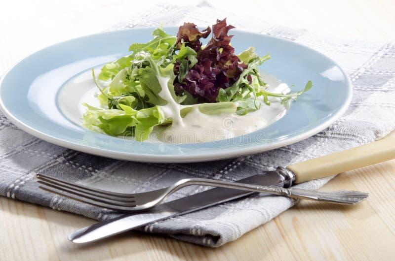 Salada fresca com molho do iogurte foto de stock royalty free