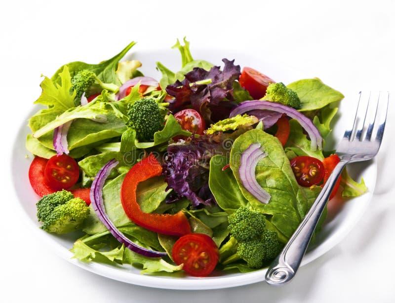 Salada fresca do jardim foto de stock royalty free