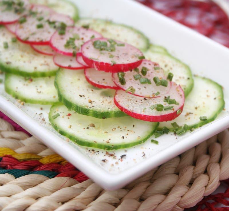 Salada fresca do pepino imagens de stock royalty free