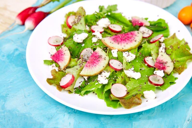 Salada fresca do rabanete da melancia Vegetariano, vegetariano, comer limpo, fazendo dieta, conceito do alimento fotografia de stock royalty free