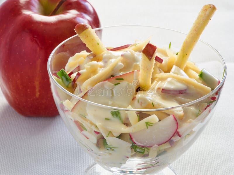 Salada fresca do vegetariano com rabanete e maçã fotos de stock royalty free