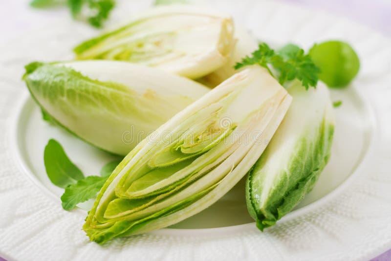 Salada fresca e saudável da endívia da chicória em uma placa fotos de stock