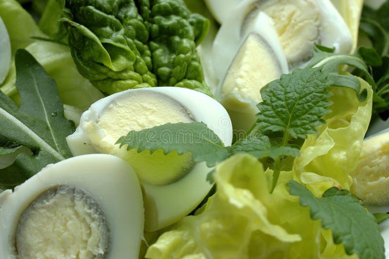 Salada fresca verde com ovos imagem de stock