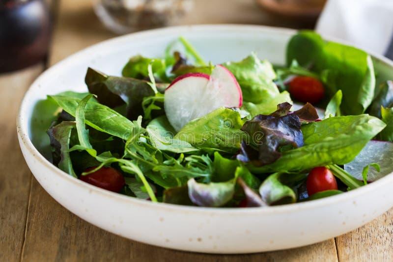Salada frondosa fresca foto de stock royalty free