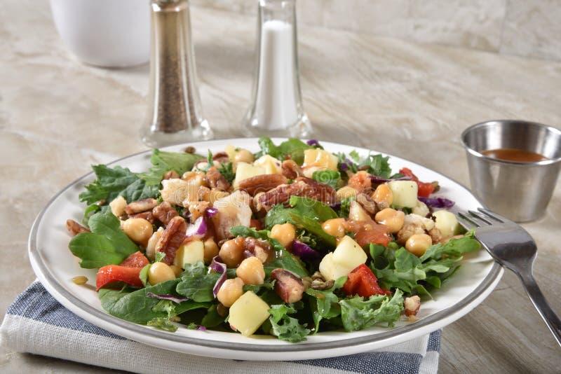 Salada gourmet da leguminosa dos espinafres imagem de stock royalty free