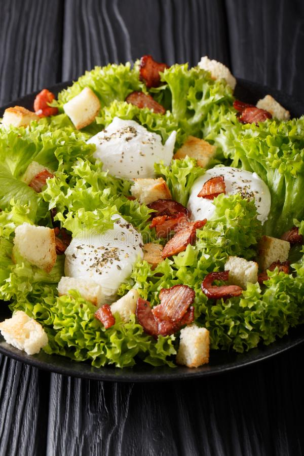 Salada gourmet Lyonnaise com alface, bacon friável, pão torrado e fotos de stock royalty free