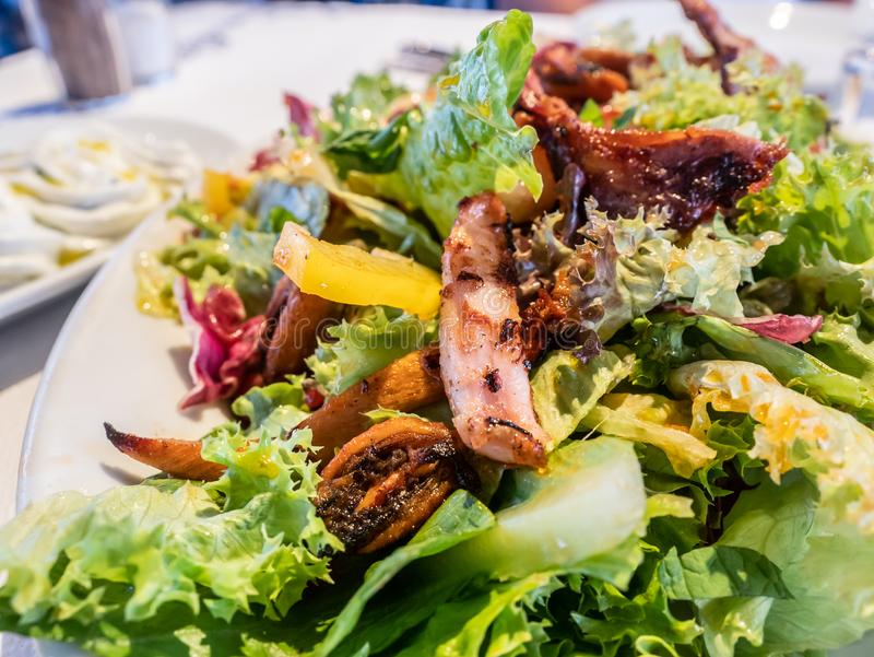 Salada grega com alimento de mar fritado e grelhado misturado imagem de stock