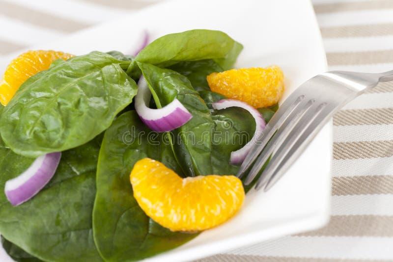Salada III do mandarino do espinafre foto de stock royalty free