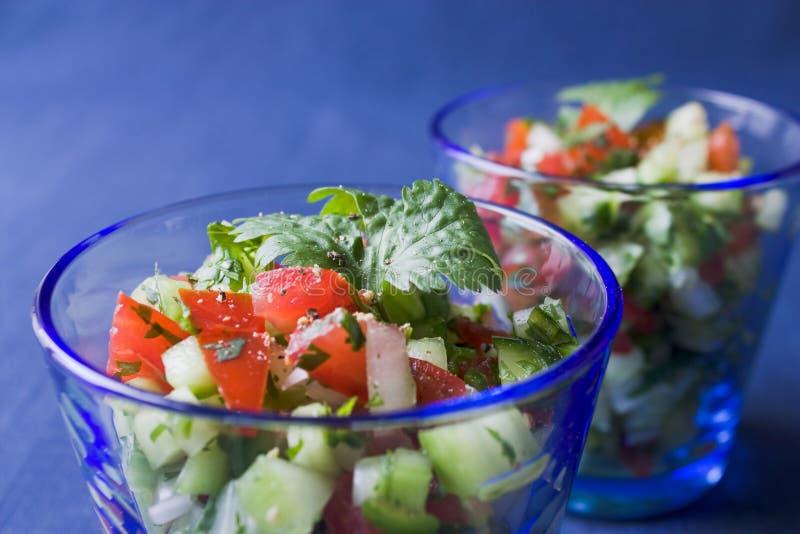 Salada indiana do pepino foto de stock