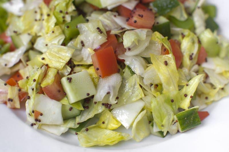 Salada indiana tradicional imagens de stock