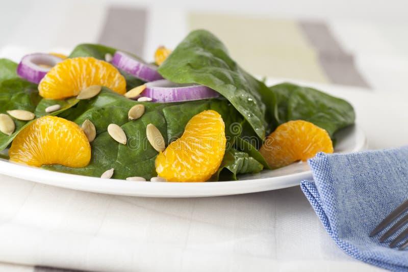 Salada IV do mandarino do espinafre foto de stock