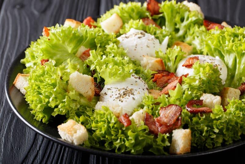 Salada Lyonnaise francesa orgânica com alface, bacon, pão torrado e imagens de stock royalty free