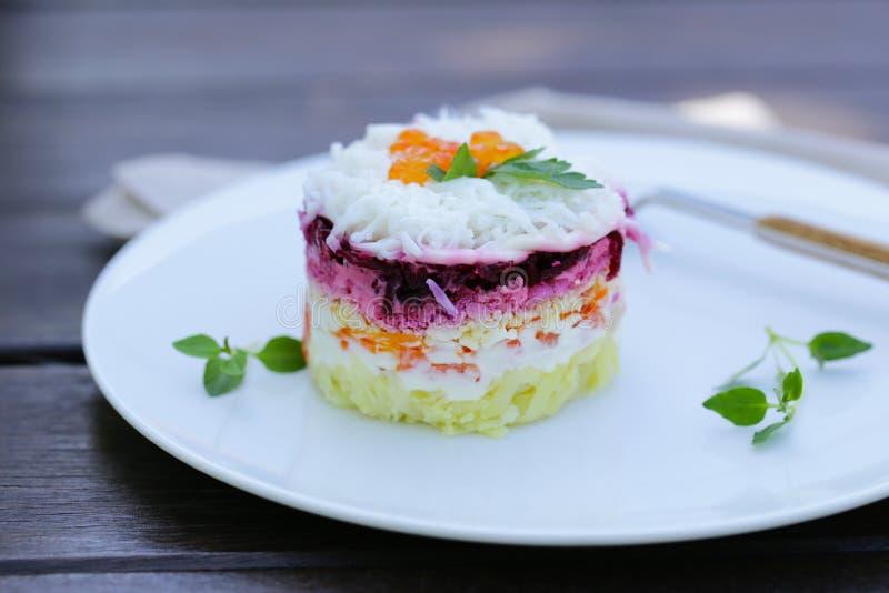 Salada mergulhada com beterrabas imagem de stock royalty free