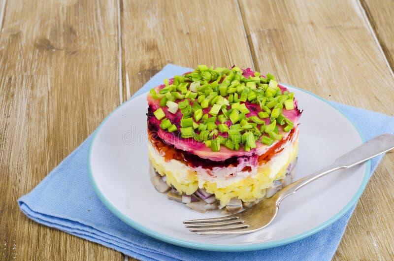 Salada mergulhada com vegetais e arenques fotos de stock