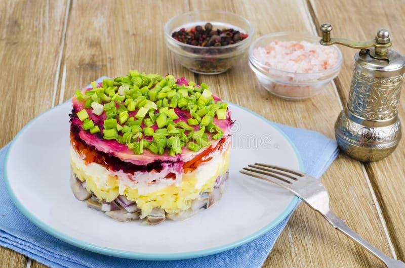 Salada mergulhada com vegetais e arenques imagens de stock royalty free